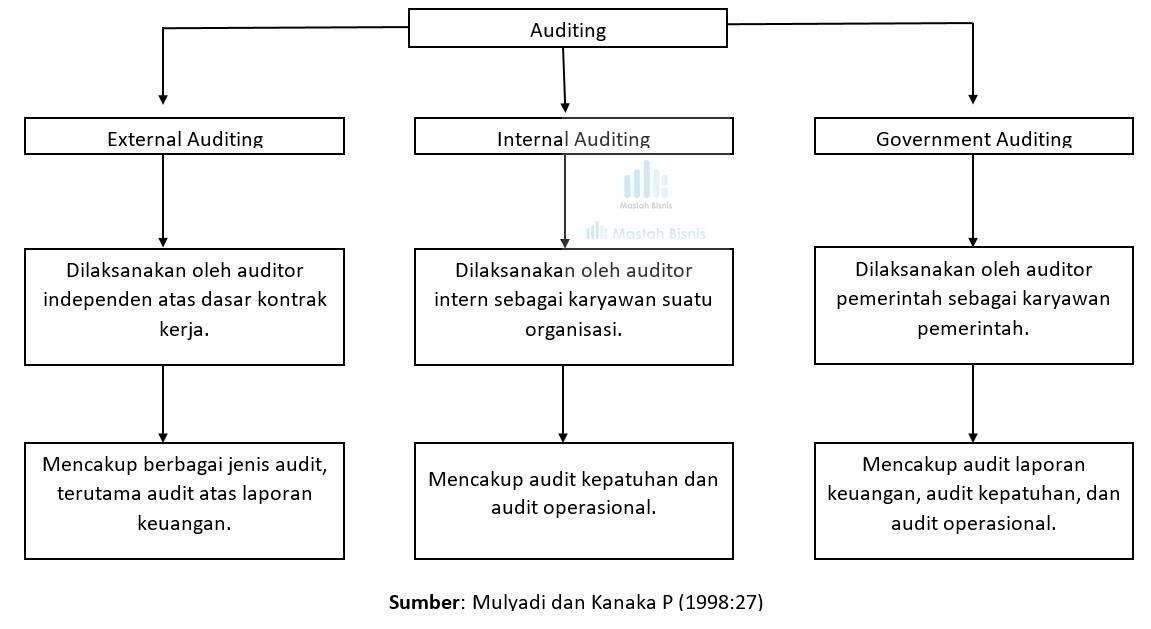 auditor independen, internal, pemerintah