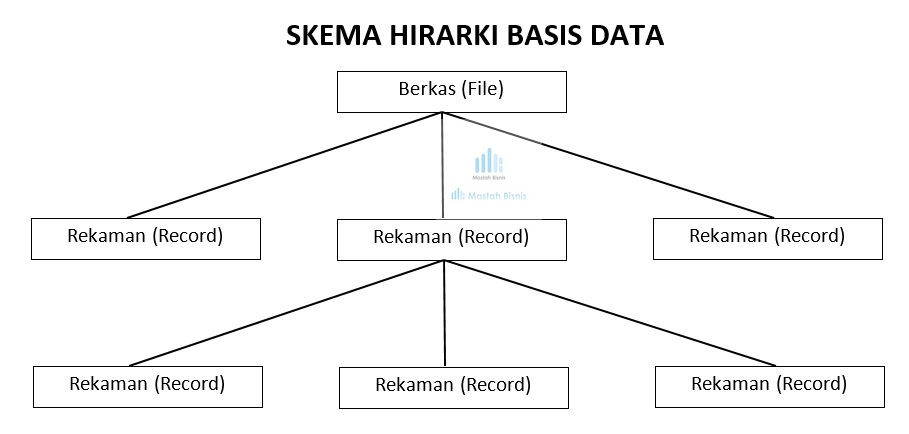 skema hirarki basis data database