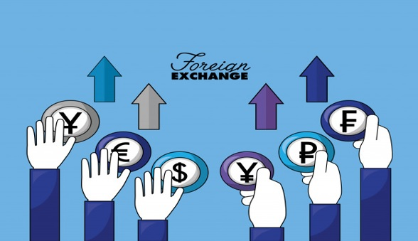 Fungsi Foreign Exchange